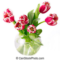 Bouquet of pink tulips in a vase on a round white