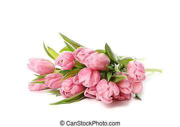 Bouquet of pink tulips isolated on white background