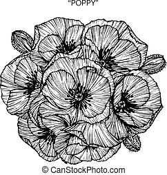 Bouquet of poppy flowers drawing.