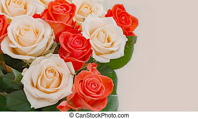 bouquet of red and cream roses on a light background with place for text.