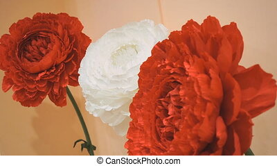 Bouquet of red and white carnations. Close-up - Bouquet of...
