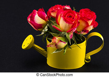 Bouquet of red and yellow roses in watering can on a black background closeup