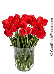 Bouquet of red flowers tulips in vase, isolated on white background