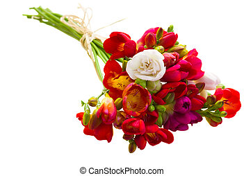 bouquet of red freesia flowers