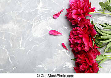 Bouquet of red peony flowers on a grey background