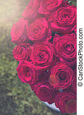 Bouquet of red roses in a box on the grass