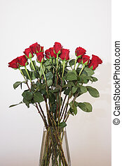 bouquet of red roses in a vase on white background