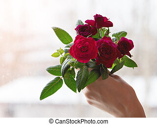 Bouquet of red roses in hand against the window.