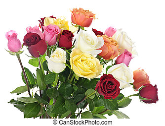Bouquet of assorted multicolored roses isolated on white background