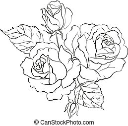 Bouquet of roses. - Bouquet of roses iolated on white ...