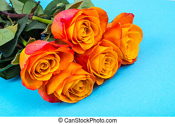 Bouquet of roses on bright background with place for text, background for greeting card