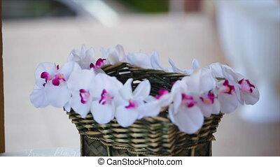 Bouquet of snowdrops in a wicker basket.