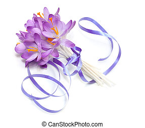Bouquet of spring crocuses on a white background