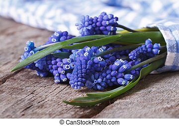 bouquet of spring flowers muscari wrapped in blue cloth