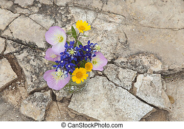 Bouquet of Texas wildflowers in a jar on stone ground