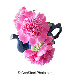 bouquet of three peonies in a blue porcelain teapot, isolated, on a white background