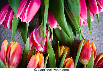 Bouquet of tulip flowers.