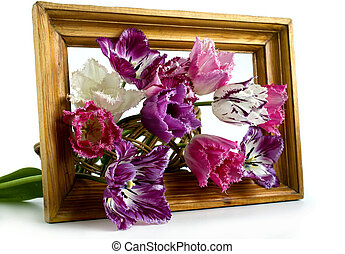 bouquet of tulips in a frame on a white background