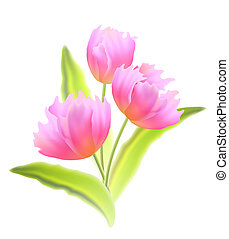 Bouquet of tulips isolated.