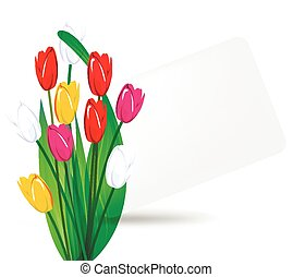 bouquet of tulips on a background s