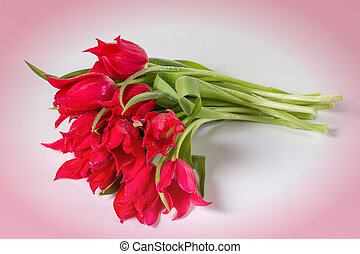 Bouquet of tulips on a pink background