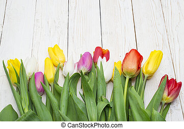 bouquet of tulips on a white background, womens day, valentines day