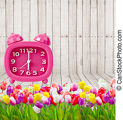 Bouquet of Tulips with vintage pink alarm clock.