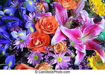 Bouquet of vibrant colors