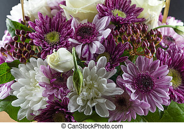Bouquet of white and purple chrysanthemums. Macro photo flowers.