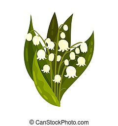 Bouquet of white lilies. Vector illustration on a white background.