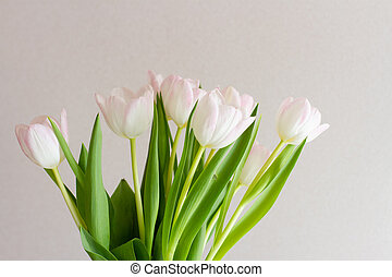 bouquet of white tulips in a vase in the sun