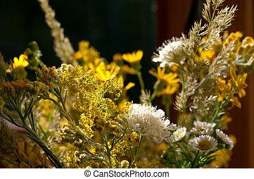 bouquet of wild flowers backlit on the window