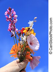 Bouquet of wild flowers in hand against the blue sky