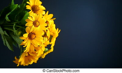 bouquet of yellow big daisies on black background