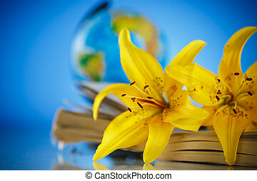 bouquet of yellow lilies with a book