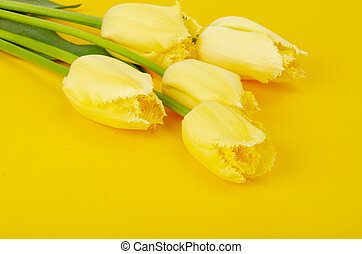 Bouquet of yellow tulips with terry edges.