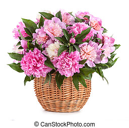 Bouquet peons in a basket isolated on a white background