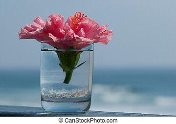 bouquet, plage