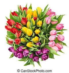 bouquet, printemps, backgrou, isolé, tulipe, frais, fleurs blanches
