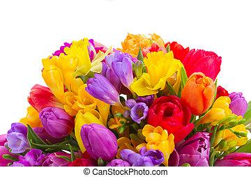 bouquet, printemps, clair, fleurs