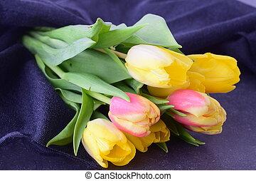 bouquet, printemps, gris, multicolore, romance, flowers., cloth., tulipes