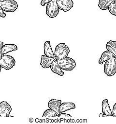 bouquet., rögtönzött, imitation., bizottság, húzott, fehér, fekete, seamless, menstruáció, hibiszkusz, kéz, image.