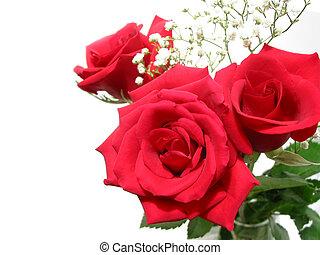bouquet, rose, blanc