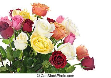 bouquet, roses