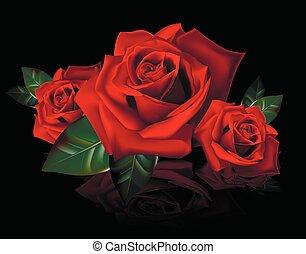 bouquet, roses, reflectio, rouges