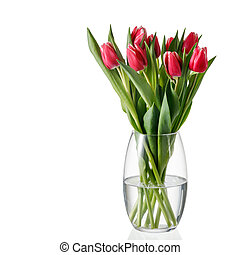 Bouquet spring pink white tulip flowers in glass vase isolated on white