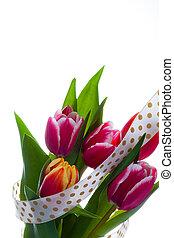 bouquet, tulipe, fleurs, isolé, white.