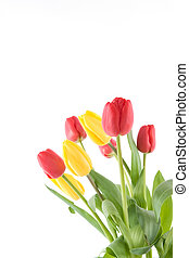 bouquet tulips red and yellow