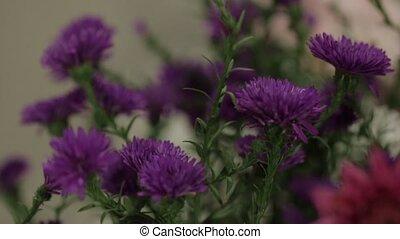 bouquet, wildflowers