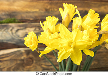 Bouquet Yellow daffodil on a wooden background. Copy space